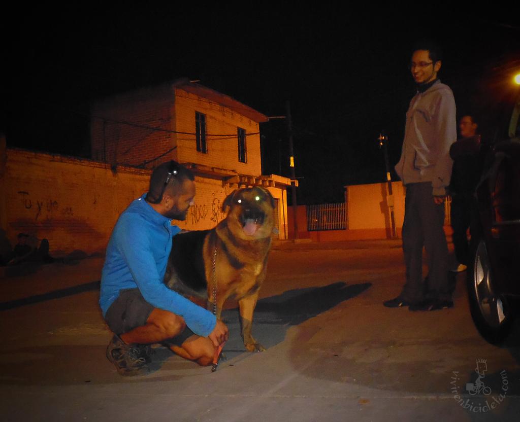 Paseando la bestia de David, en Tarimoro