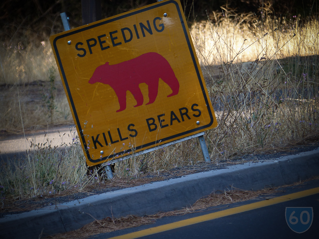 Bears notice