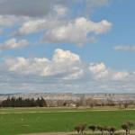 Vivir en Bicicleta Este es mi camino - Reflexiones del Ebro image 1