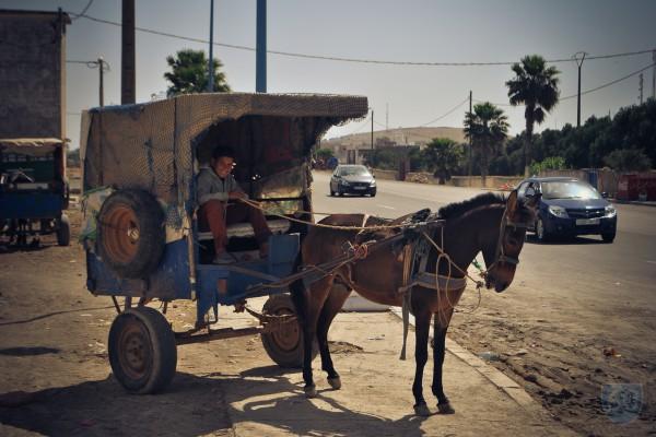 """Vivir en Bicicleta """"Los dos Marruecos"""", Desolación y el 'bello retiro de Hendrix': Essaouira.  image 7"""