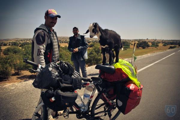 """Vivir en Bicicleta """"Los dos Marruecos"""", Desolación y el 'bello retiro de Hendrix': Essaouira.  image 14"""