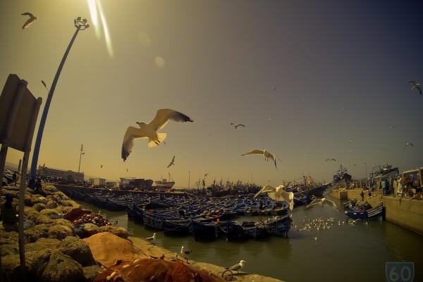 """Vivir en Bicicleta """"Los dos Marruecos"""", Desolación y el 'bello retiro de Hendrix': Essaouira.  image 12"""