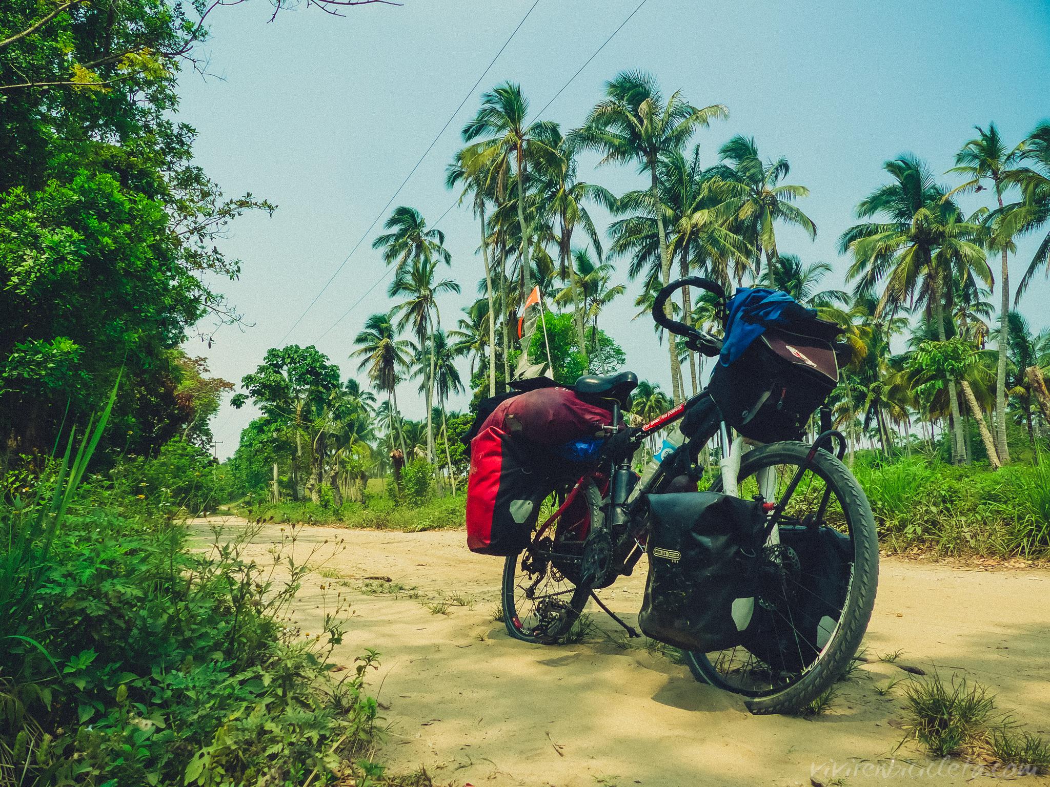 Vivir en Bicicleta Bienvenido a la selva image 4